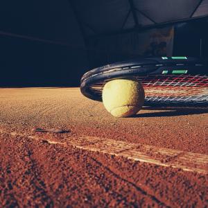 一顆黃色網球跟黑色網球拍